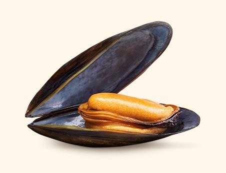 Espinaler_mussels_premium.jpg