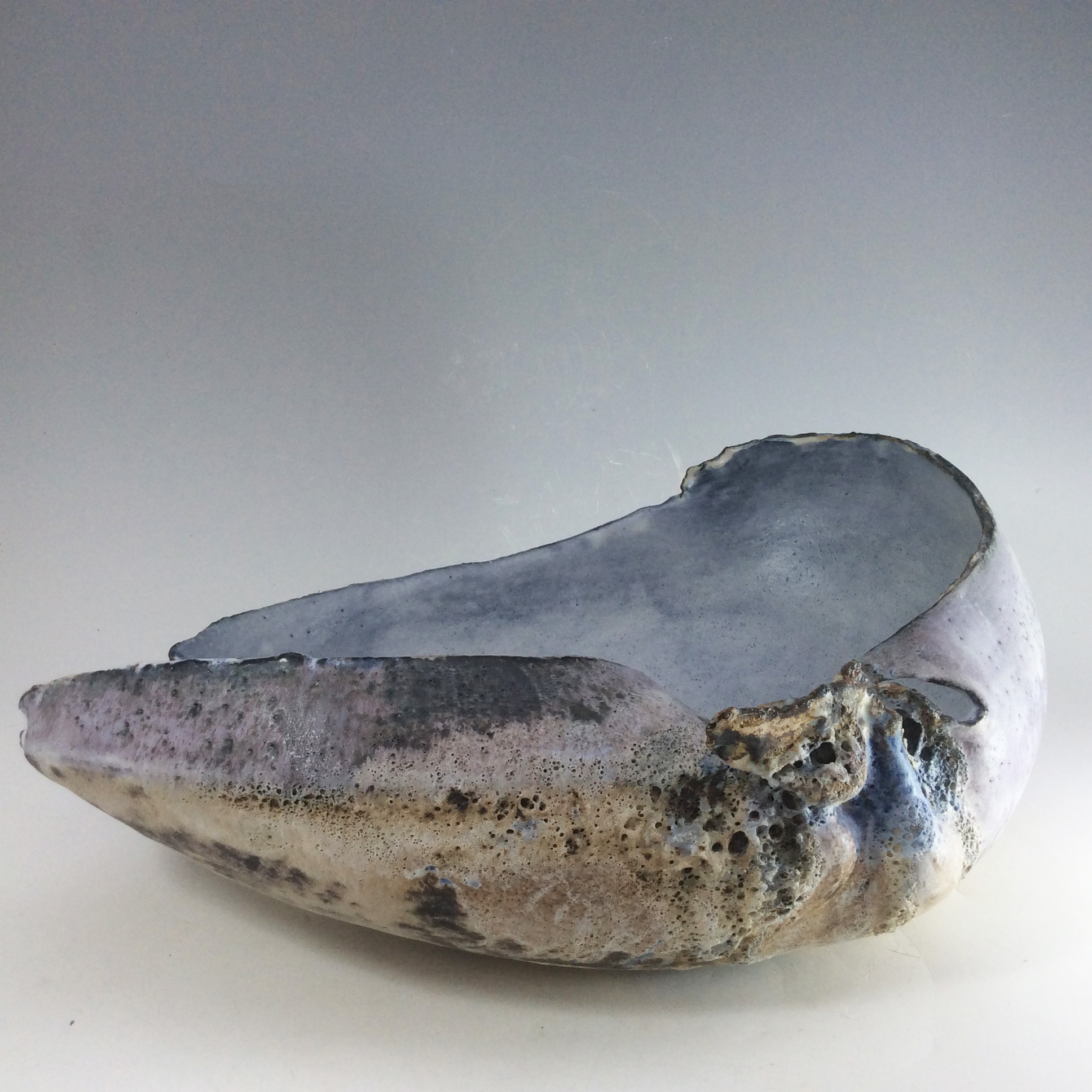 Shell with grey/blue interior