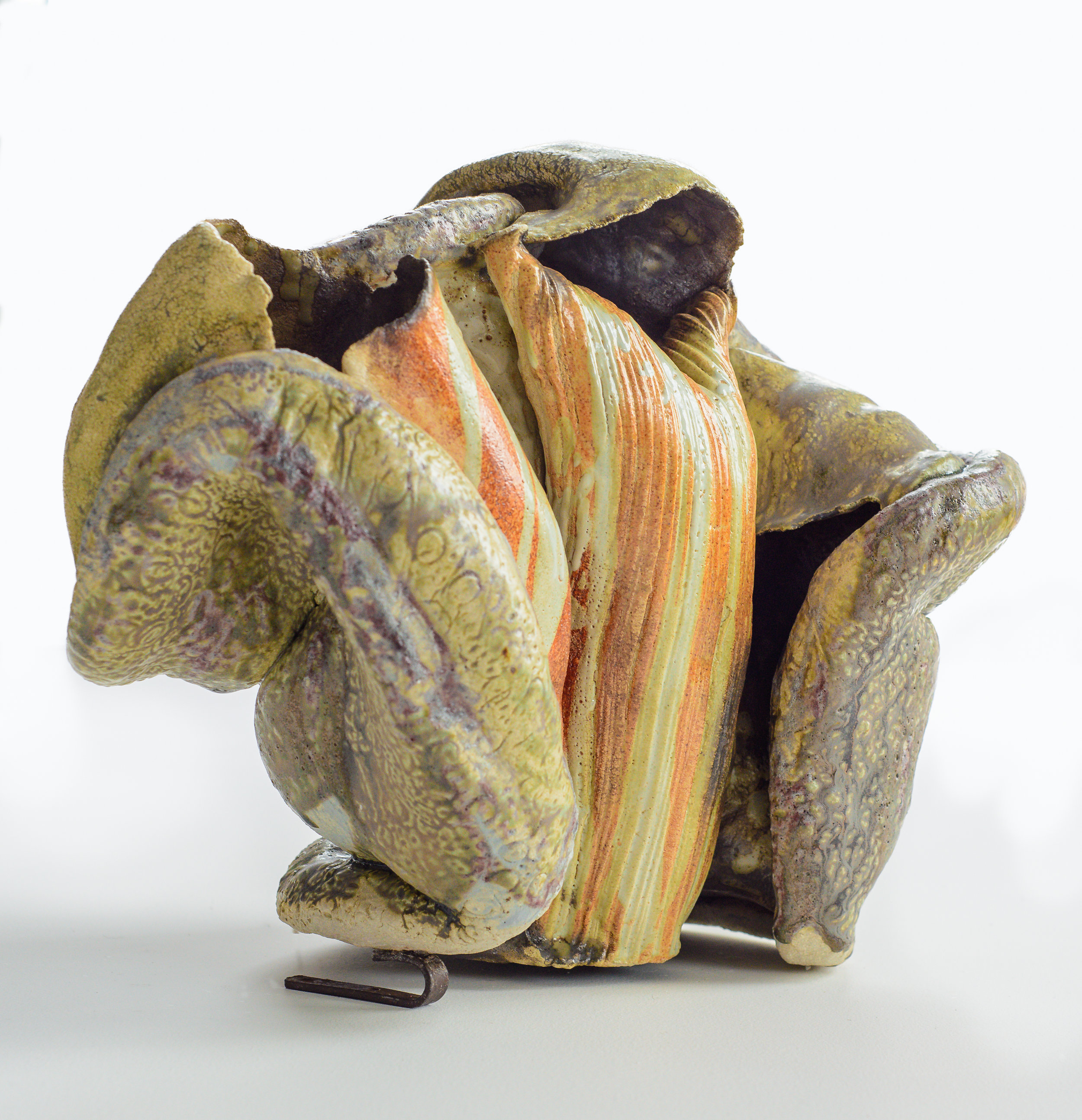 Sarah Villeneau - Hooded Form