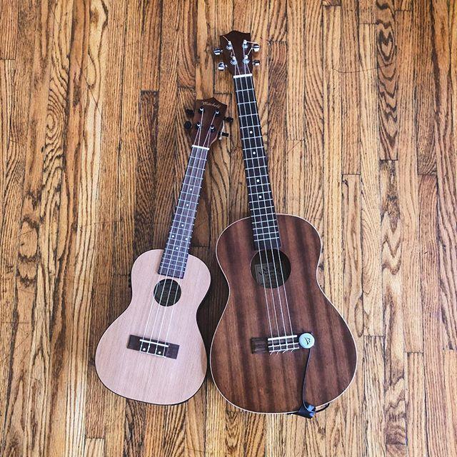 Start teaching my first ukulele classes tomorrow! Getting excited 😆 . . . . . . . #ukulele #ukulelecover #ukulelesongs #teaching #lessons #fall2018 #uke #ukulelelove #baritoneukulele #sapranoukulele #mnmusic #mplsmusic #minneapolis #music #mn