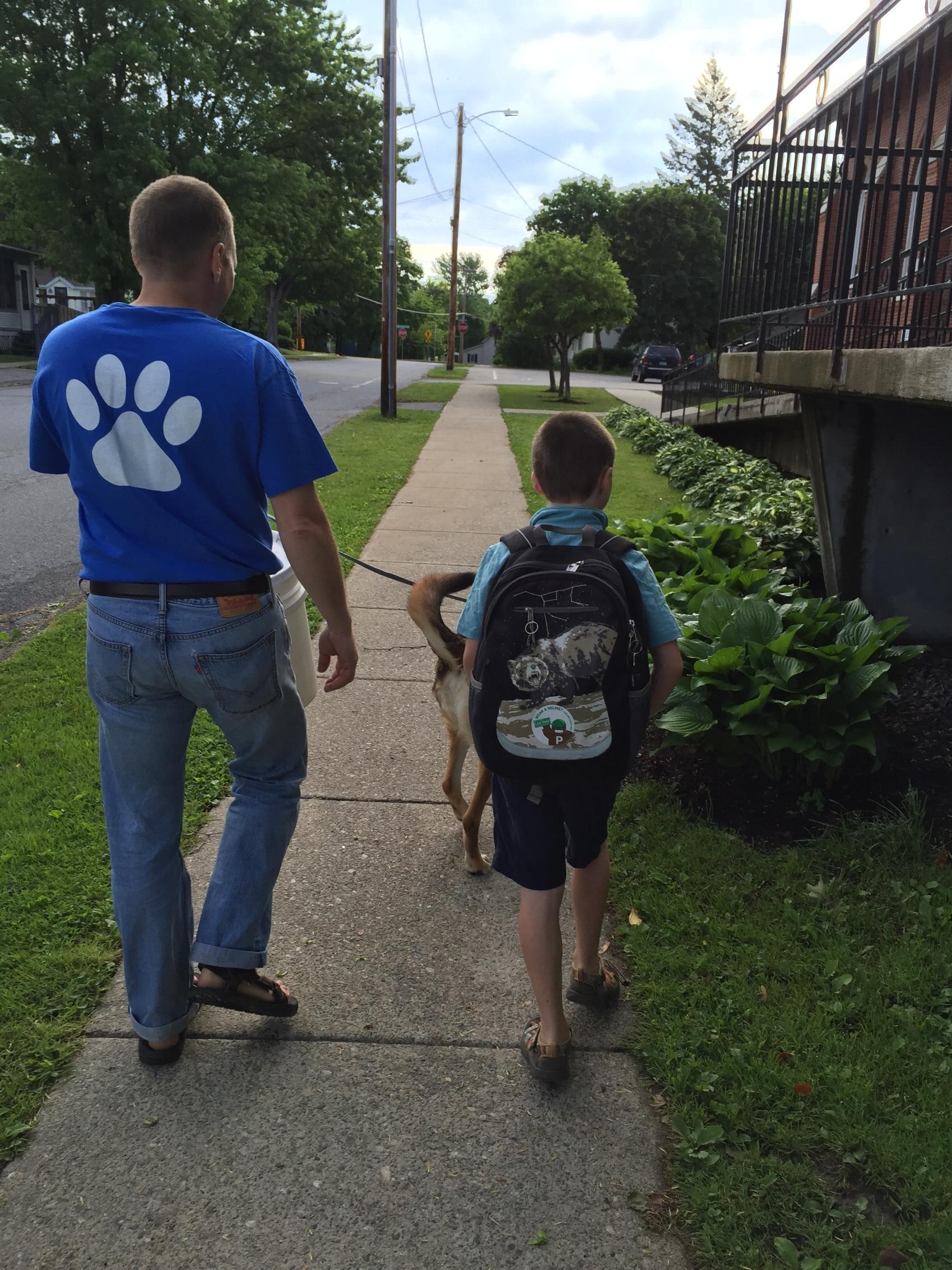 Many children walk or bike to school in vergennes