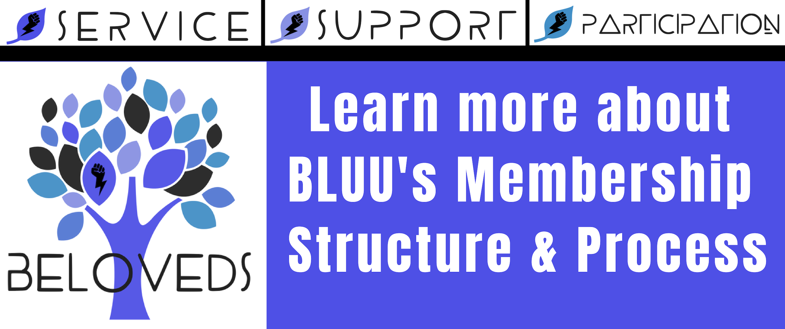New BasicMembership Website Header.png