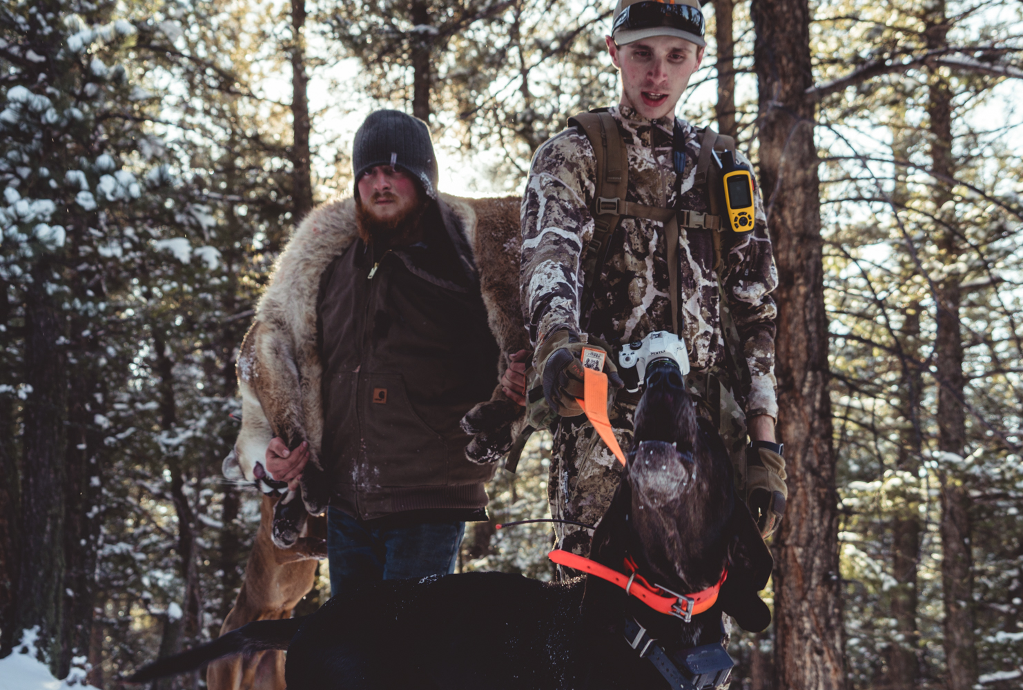 Houndsman hunting mountain lion