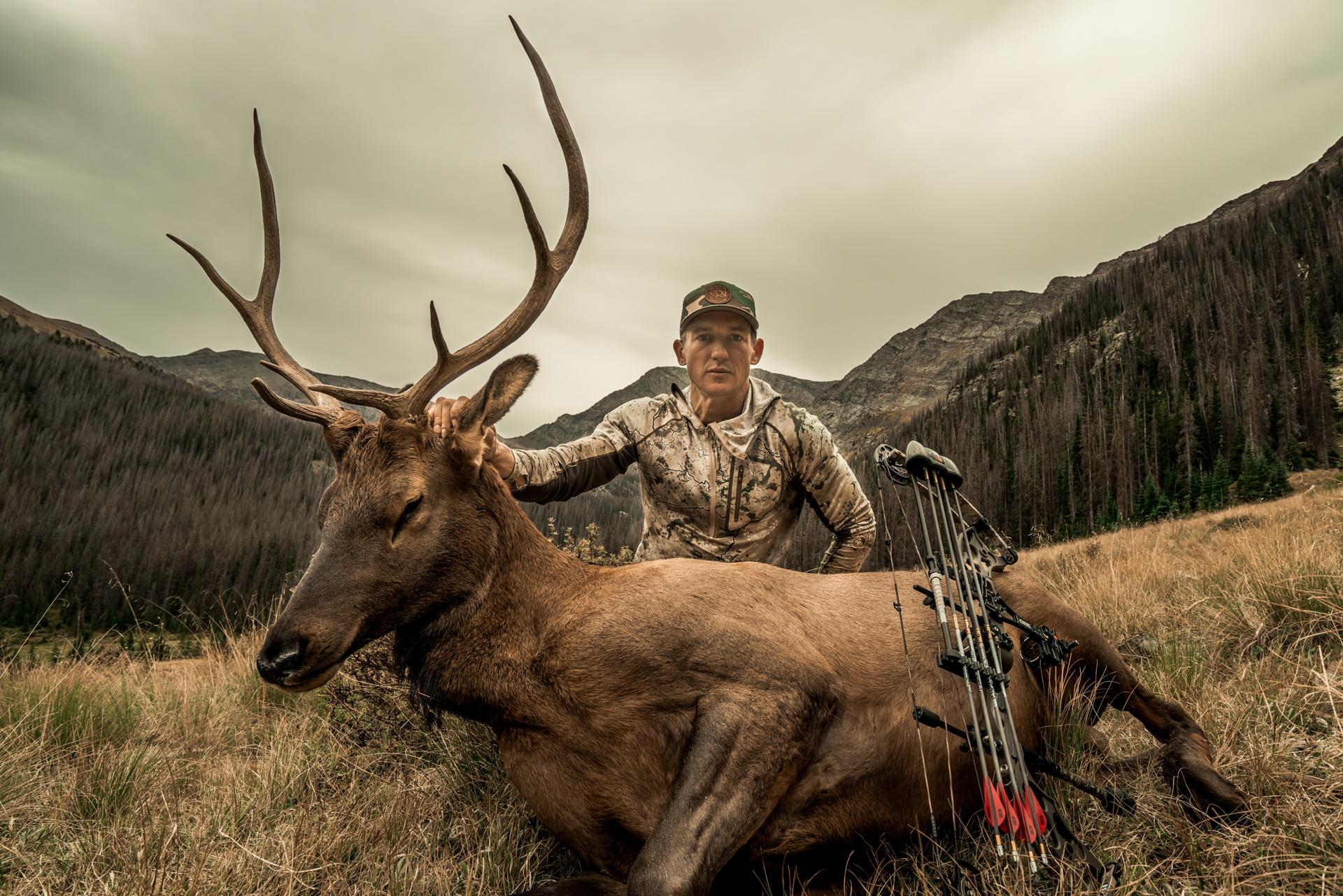 bowhunter hunting bull elk