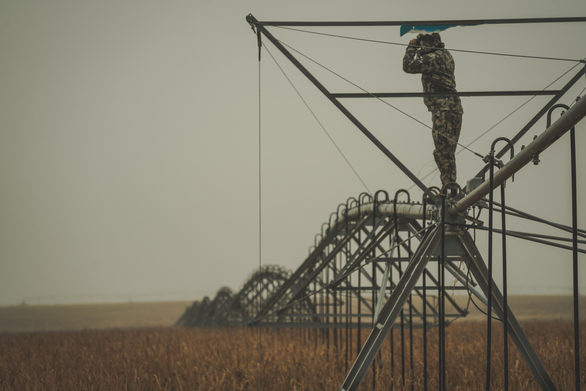 Our eye naturally follows the center pivot irrigation line to the hunter above.