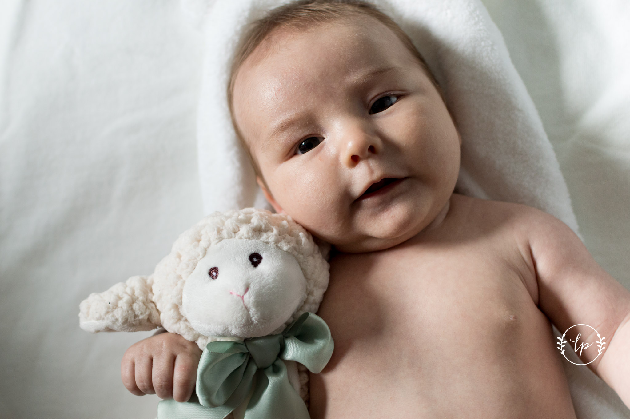 Lifestyle Newborn - Lee Pettigrew Photography-18.jpg