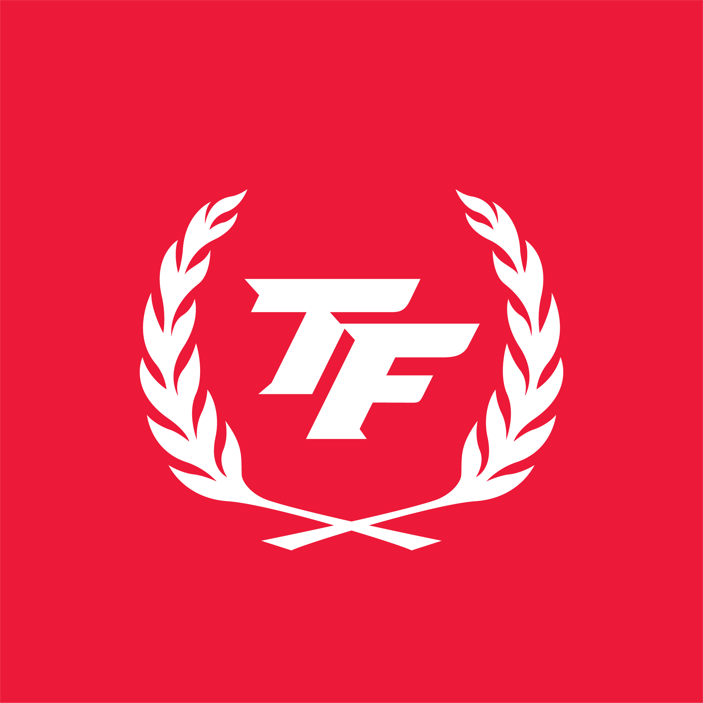 TF-Works.png