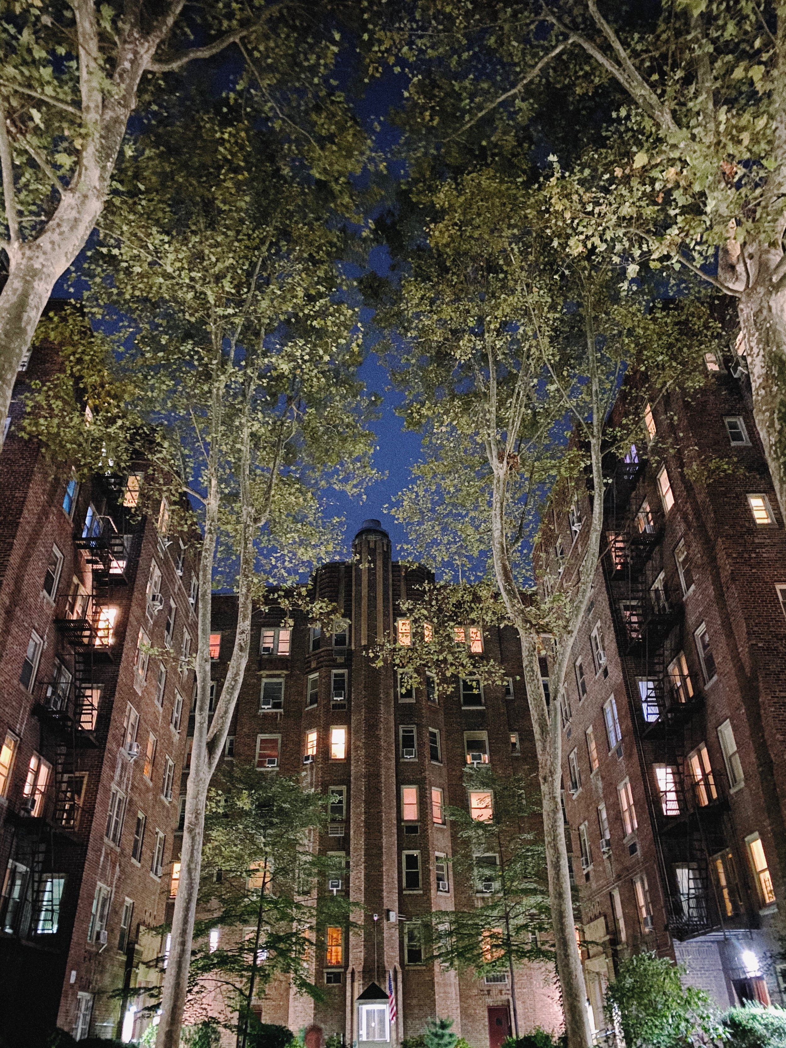 I've taken this photo of my courtyard many times, but the scene never looked this. Notice the uplighting on the trees and the buildings.
