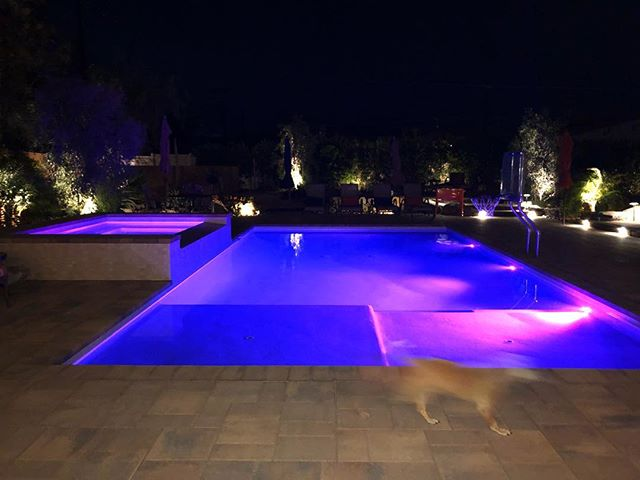 Lighting is SO important! Take the time to plan your pool lighting! ~ ~ #bubblesprings #bubblespringspoolconstruction #poolsofinstgram #poollighting #purple #blue #coachella #belgard #pentair #colorlights #globrite #💜 #palmtrees #coolbreeze #pugglephotobomb