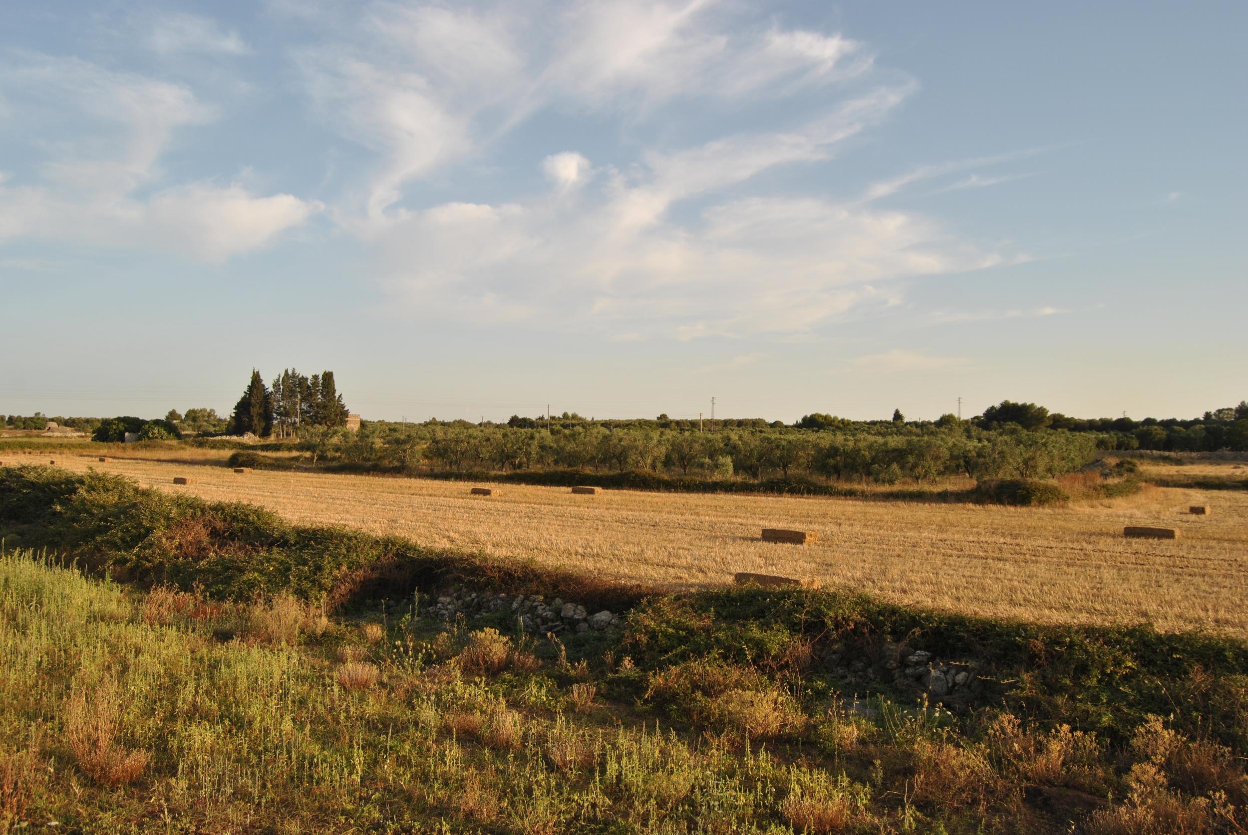 Sud-Est Apulia Salento Puglia Nature