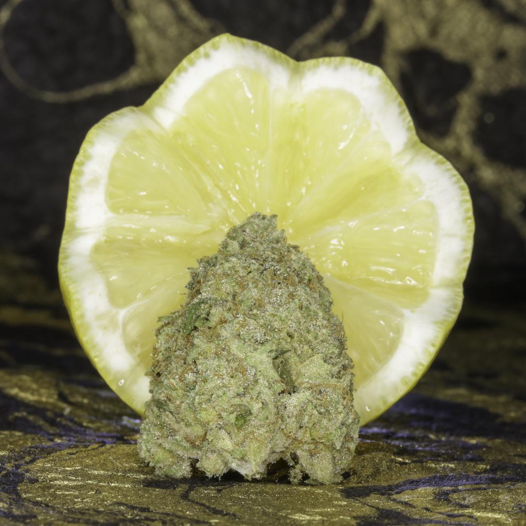 Golden Lemons.jpg
