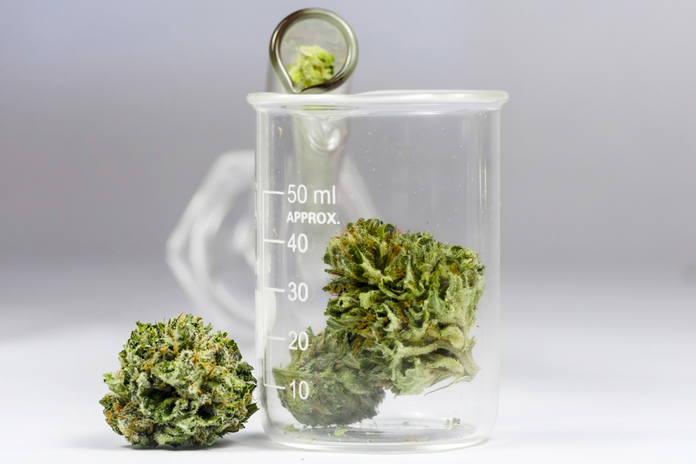 Science-and-cannabis-image.jpg