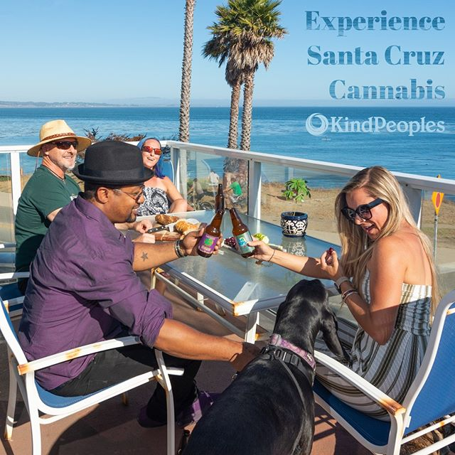 Experience Santa Cruz Cannabis⁠ ⁠ To learn more follow the link in our bio.⁠ ⁠ #hifihops #lagunitas #absolutextracts #clone #weedbeers #santacruz #santacruzcannabis #visitsantacruz #californiacannabis #santacruz #santacruzlife #dogs #cannbaiscommunity #kindpeoples #cannabisforyou