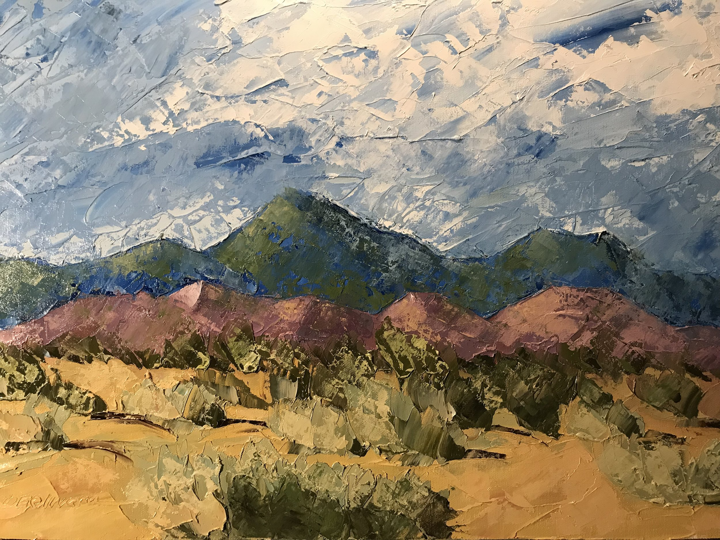 """New Mexico Desert"""