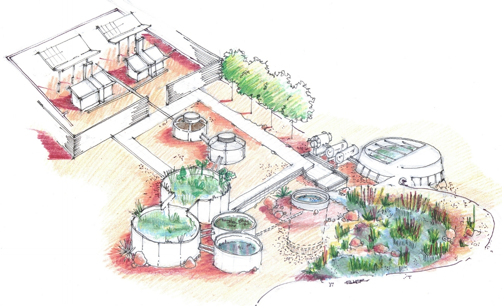 Animal Campus Dog Adoption Park Rendering