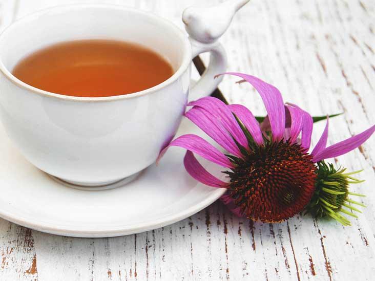 Echinacea_Tea.jpg