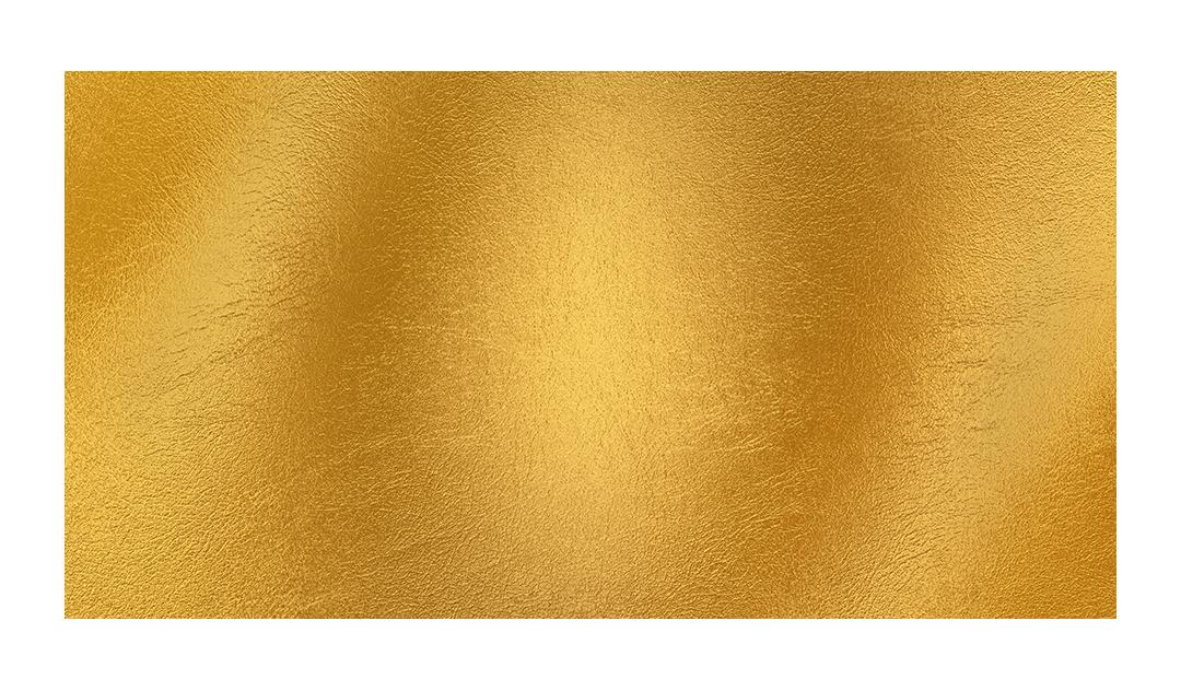 SouthernHospitality-Logo-Gold.png