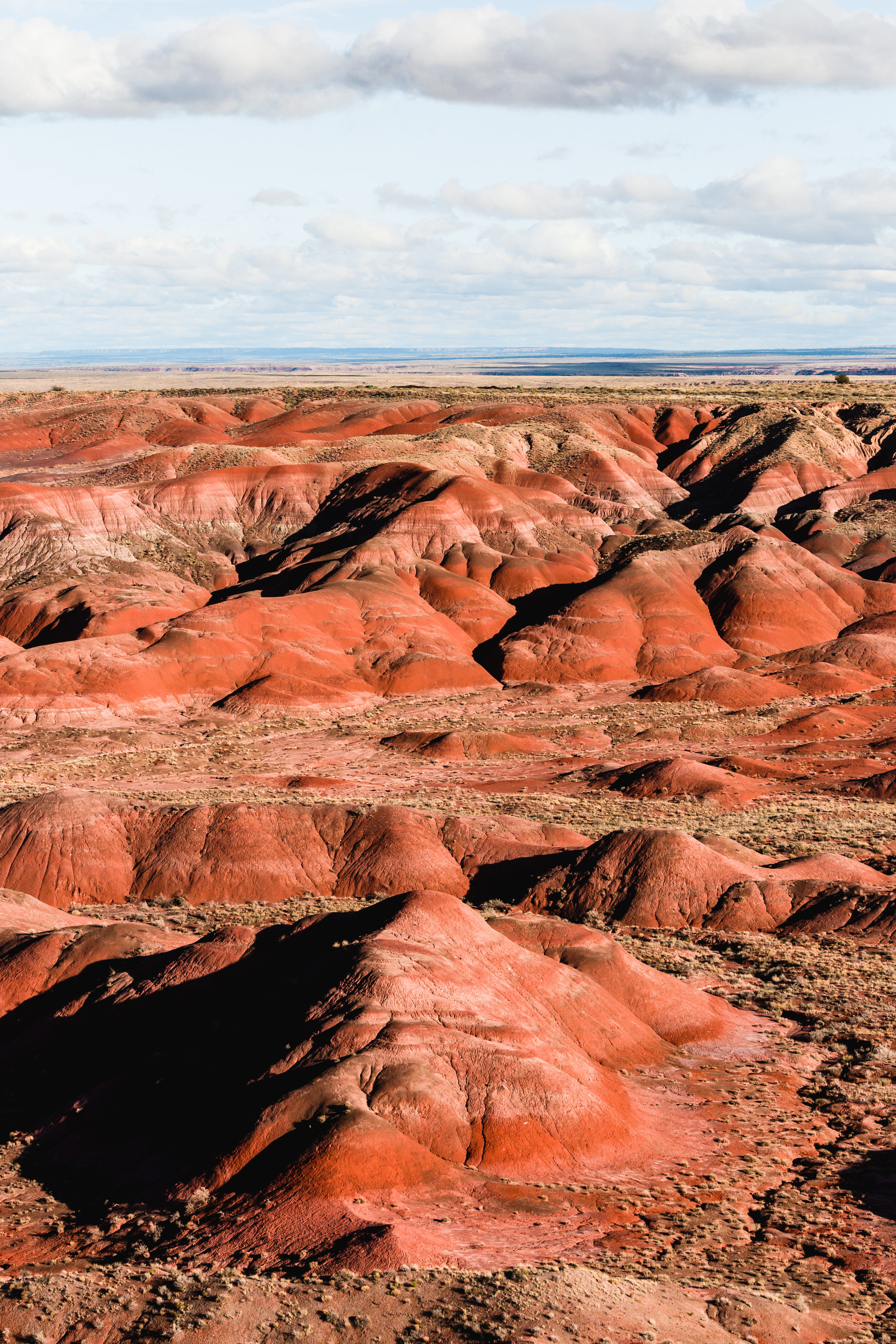 4. Petrified Forest National Park Painted Desert Holbrook Arizona Travel.jpg