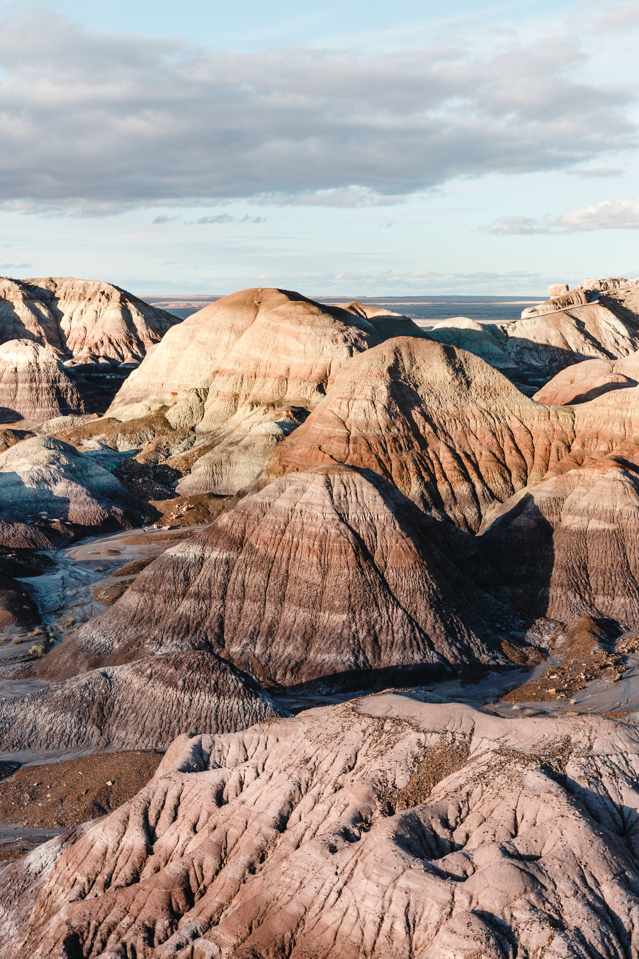 5. Petrified Forest National Park Blue Mesa Painted Desert Holbrook Arizona.jpg