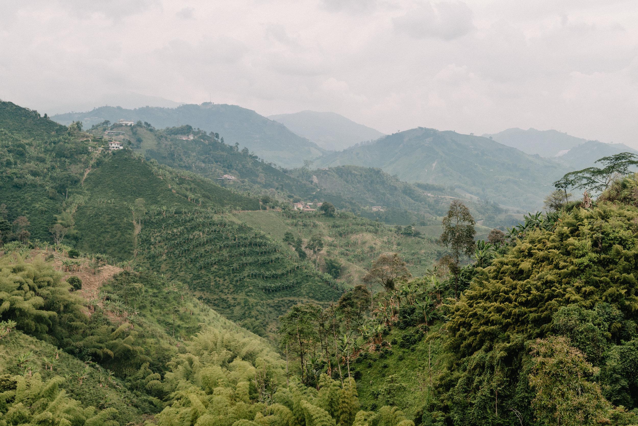Emanuel-Hahn-Colombia-Coffee-Farmers-Huila-Manizales-Pagpropina-1.jpg