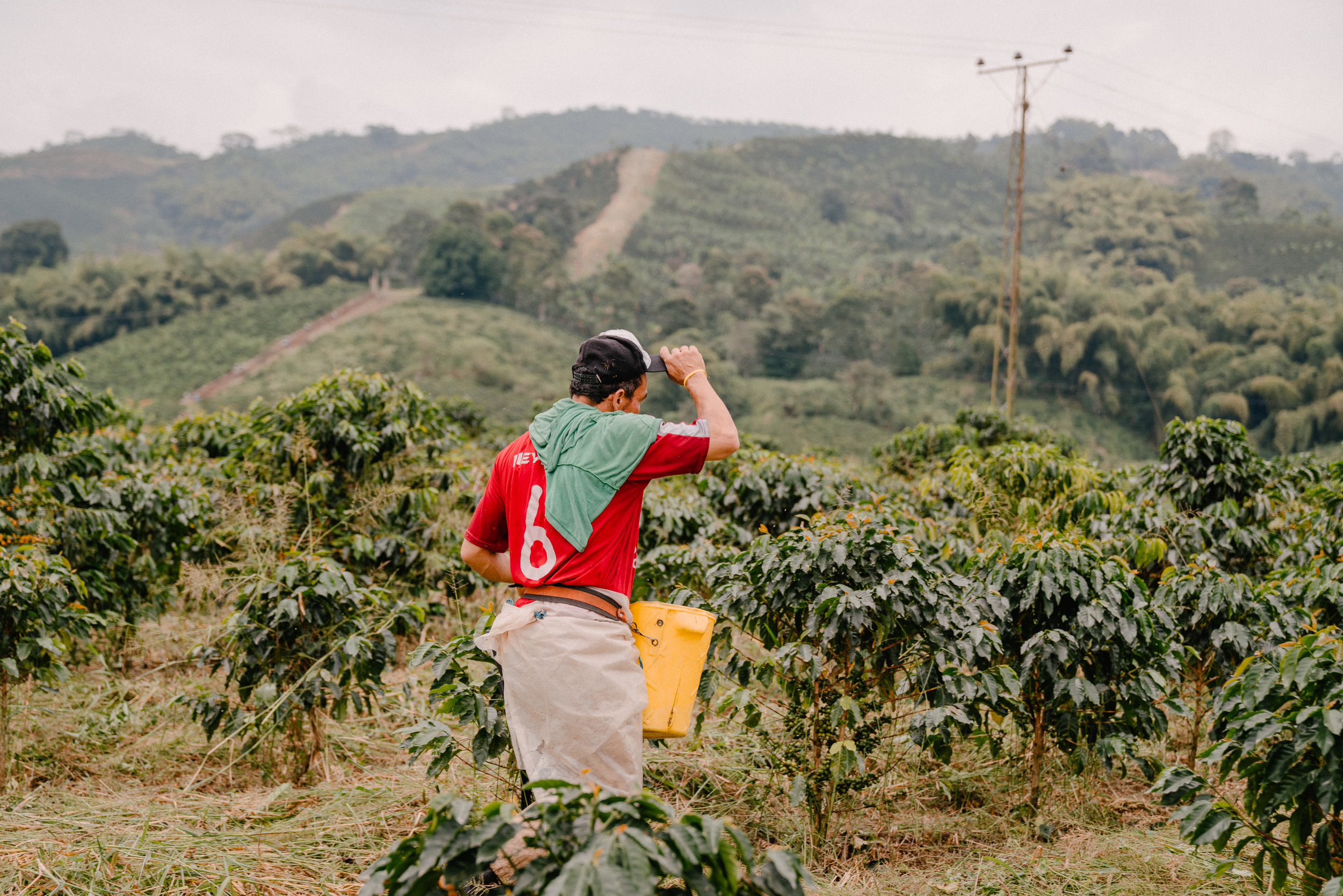 Emanuel-Hahn-Colombia-Coffee-Farmers-Huila-Manizales-Pagpropina-13.jpg