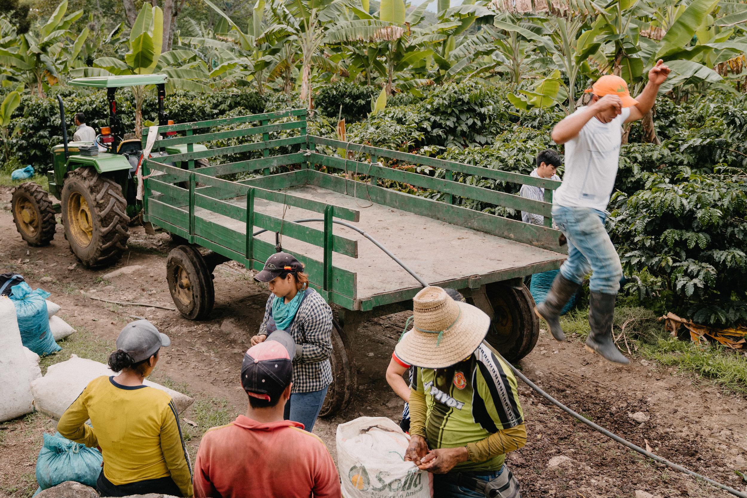 Emanuel-Hahn-Colombia-Coffee-Farmers-Huila-Manizales-Pagpropina-21.jpg
