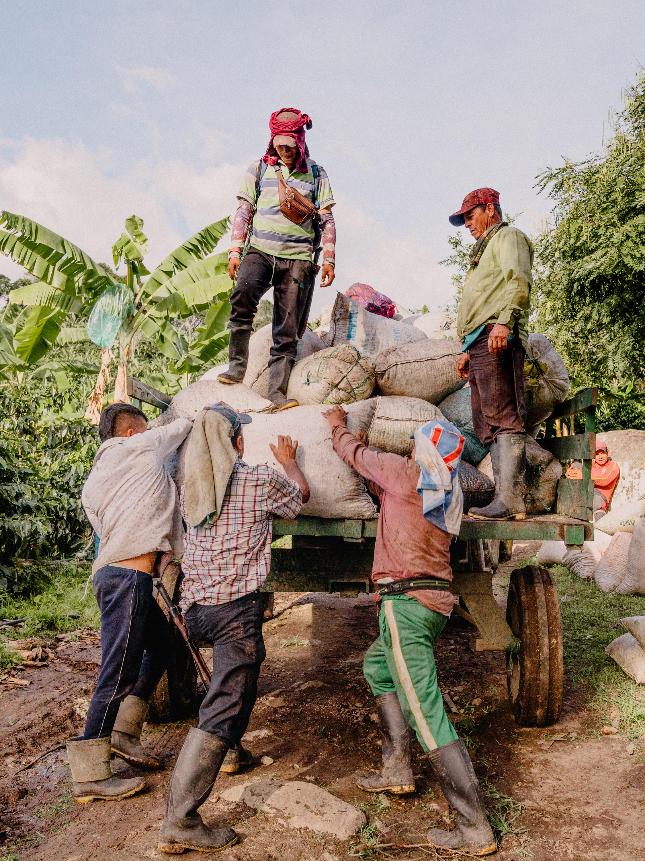 Emanuel-Hahn-Colombia-Coffee-Farmers-Huila-Manizales-Pagpropina-23.jpg