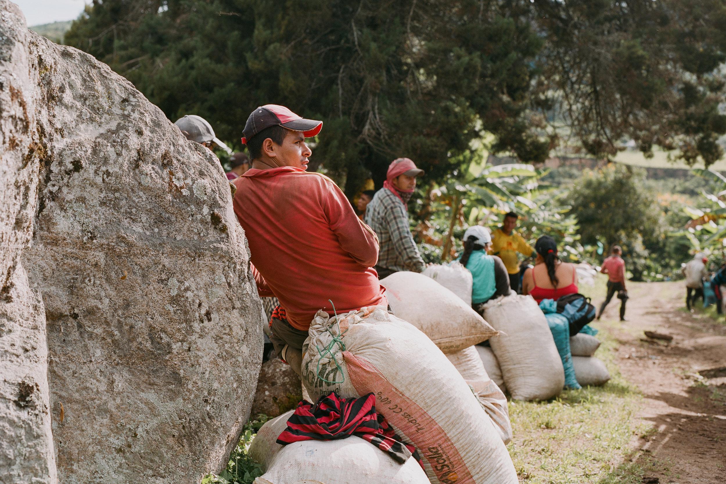 Emanuel-Hahn-Colombia-Coffee-Farmers-Huila-Manizales-Pagpropina-17.jpg