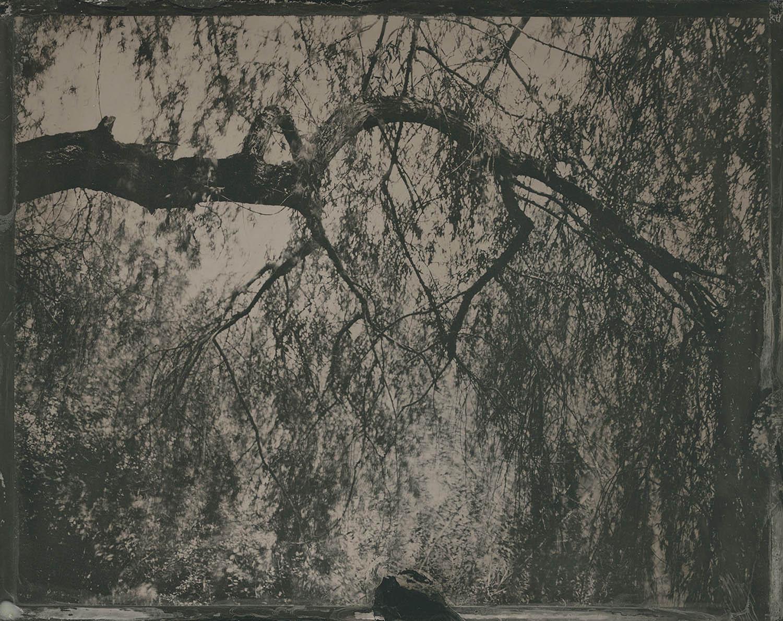 Ode to Borut - By:Geoffrey Wallang