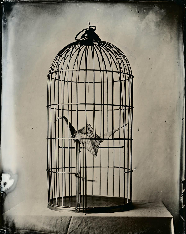 Press Freedom - By:Gabriel Kiss