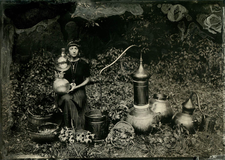 Title : Ritual Botanica  By:  Sara Mulvey  revelrytintype.com