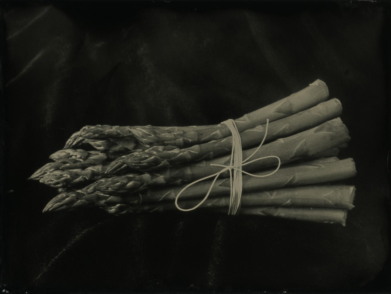 Title : Asparagus  By:  Barbara Dombach  www.barbarajdombach.com