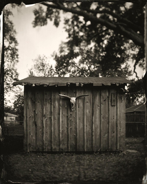 Steer Horns - By: Japheth Storlie