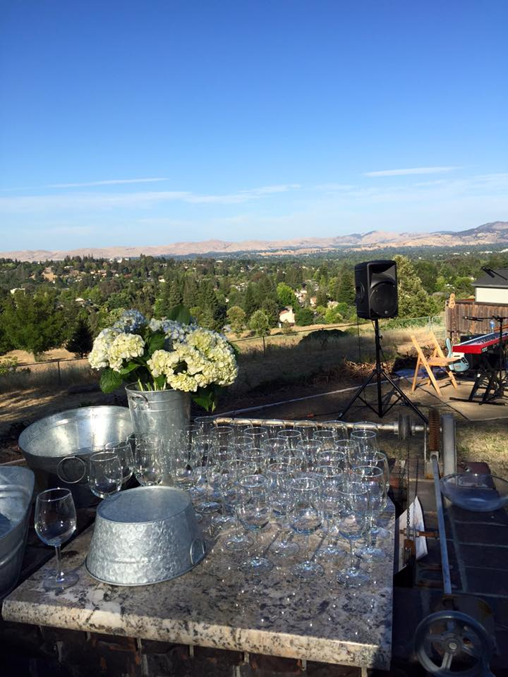 Playing house concerts for a living is pretty cool, especially when it's paired with amazing hospitality and a great view #tourlife #norcal