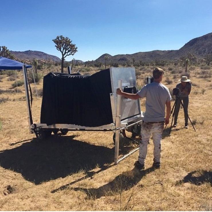 The Silver & Light Project: Joshua Tree