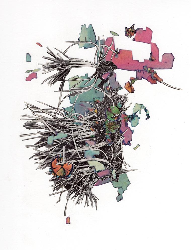 "Invertebrate I,   collage on paper, 9 x 12"""