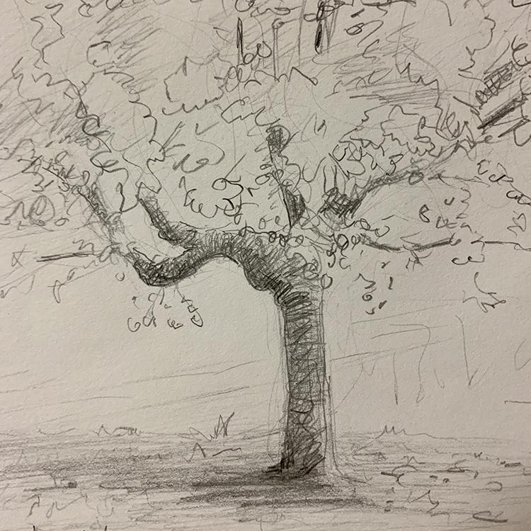 temp-Tree.jpg