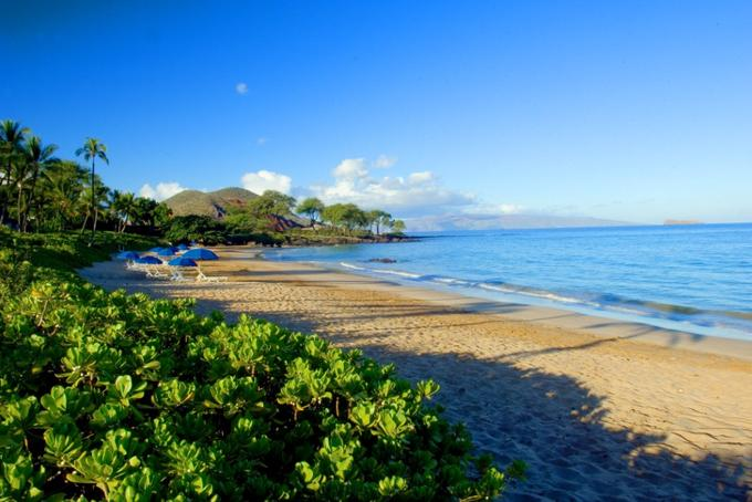Makena Beach Golf Resort Beach.jpg