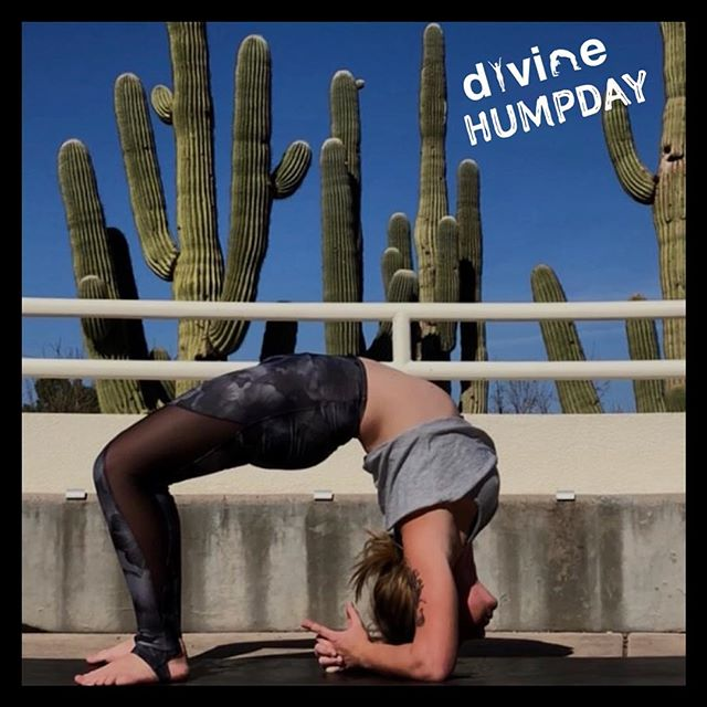 What a #DivineHumpDay today was 🌵 @yoga.mommy.az #divinewheelpose #thedivinemovement