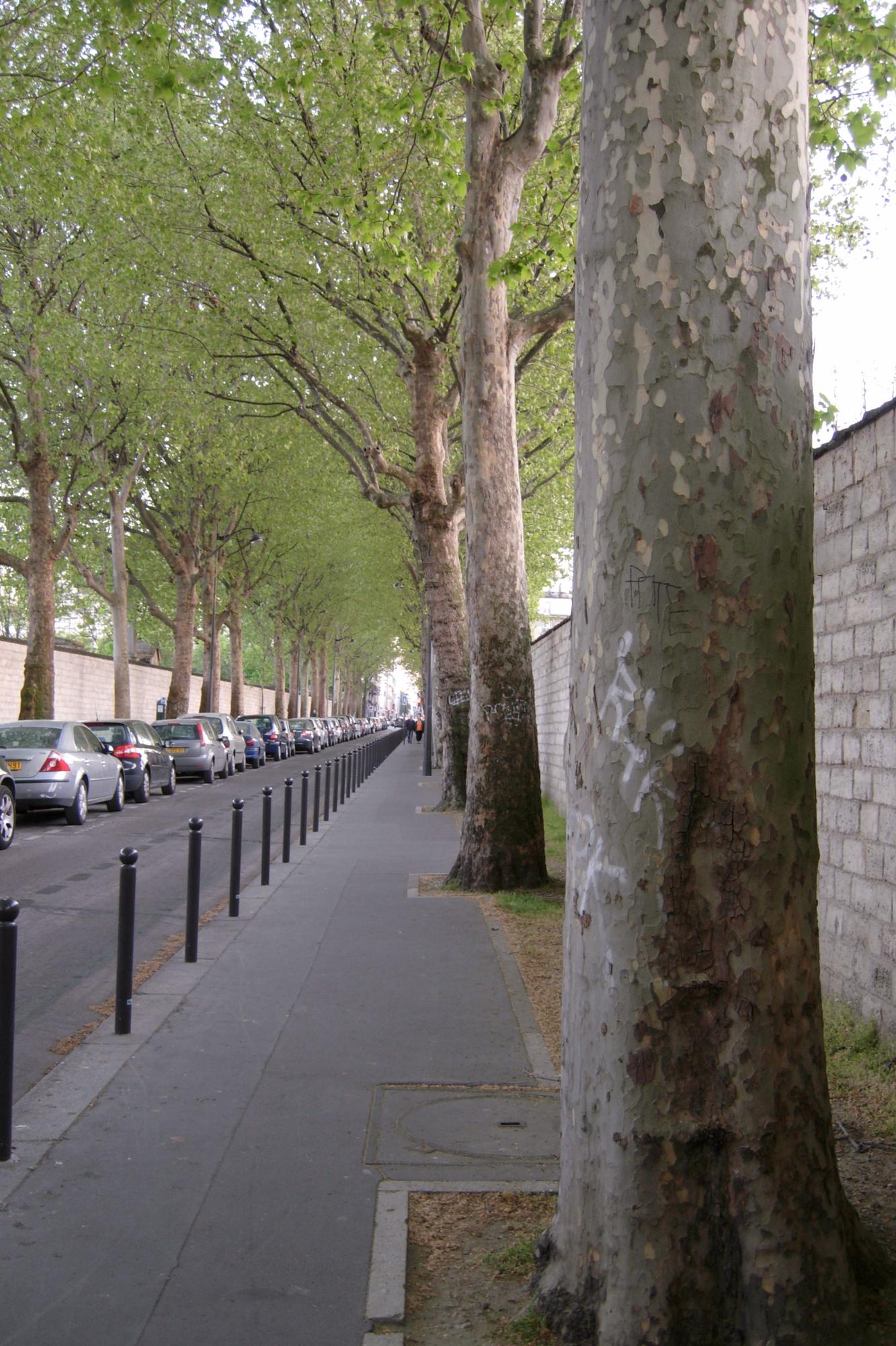 Rue Emile Richard