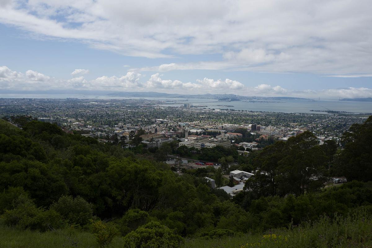 Berkeley flatlands