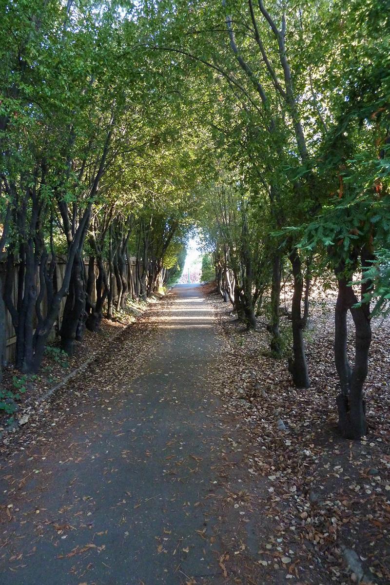 Uplands path