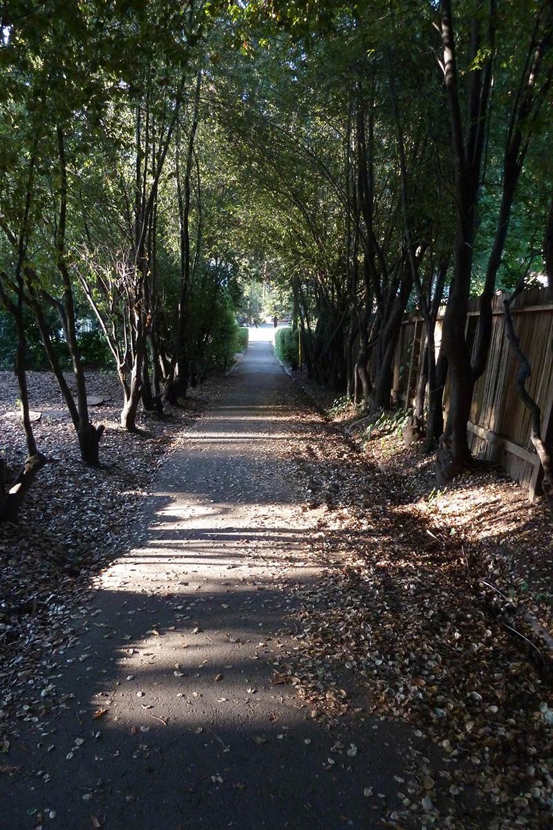 Uplands walkway