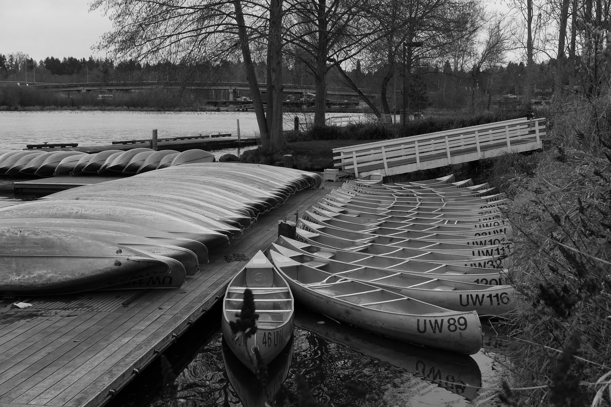 Rental canoes, Lake Washington