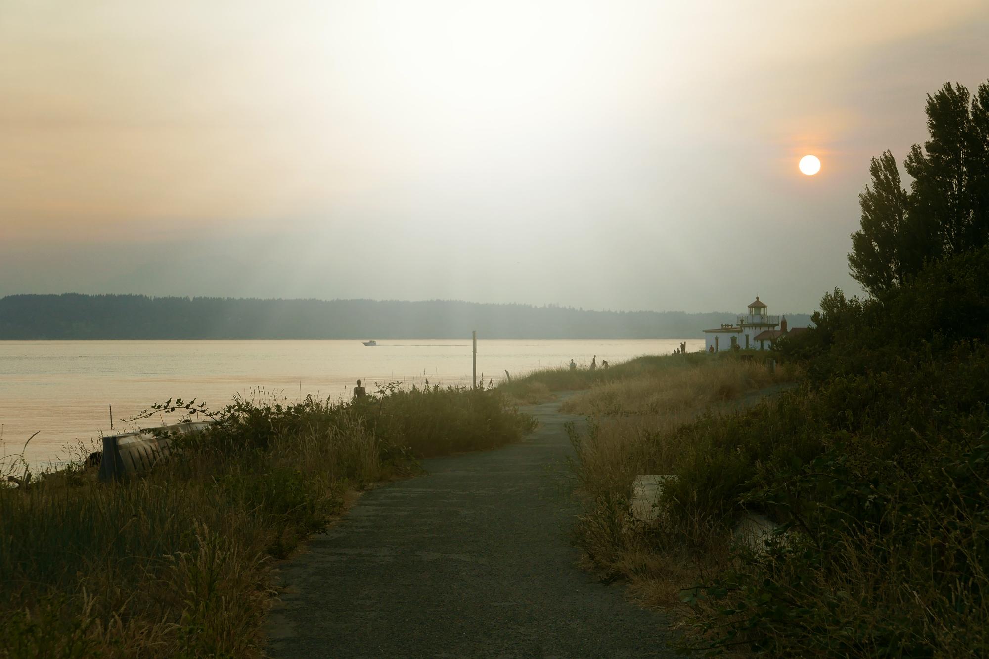 summer forest fire smoke