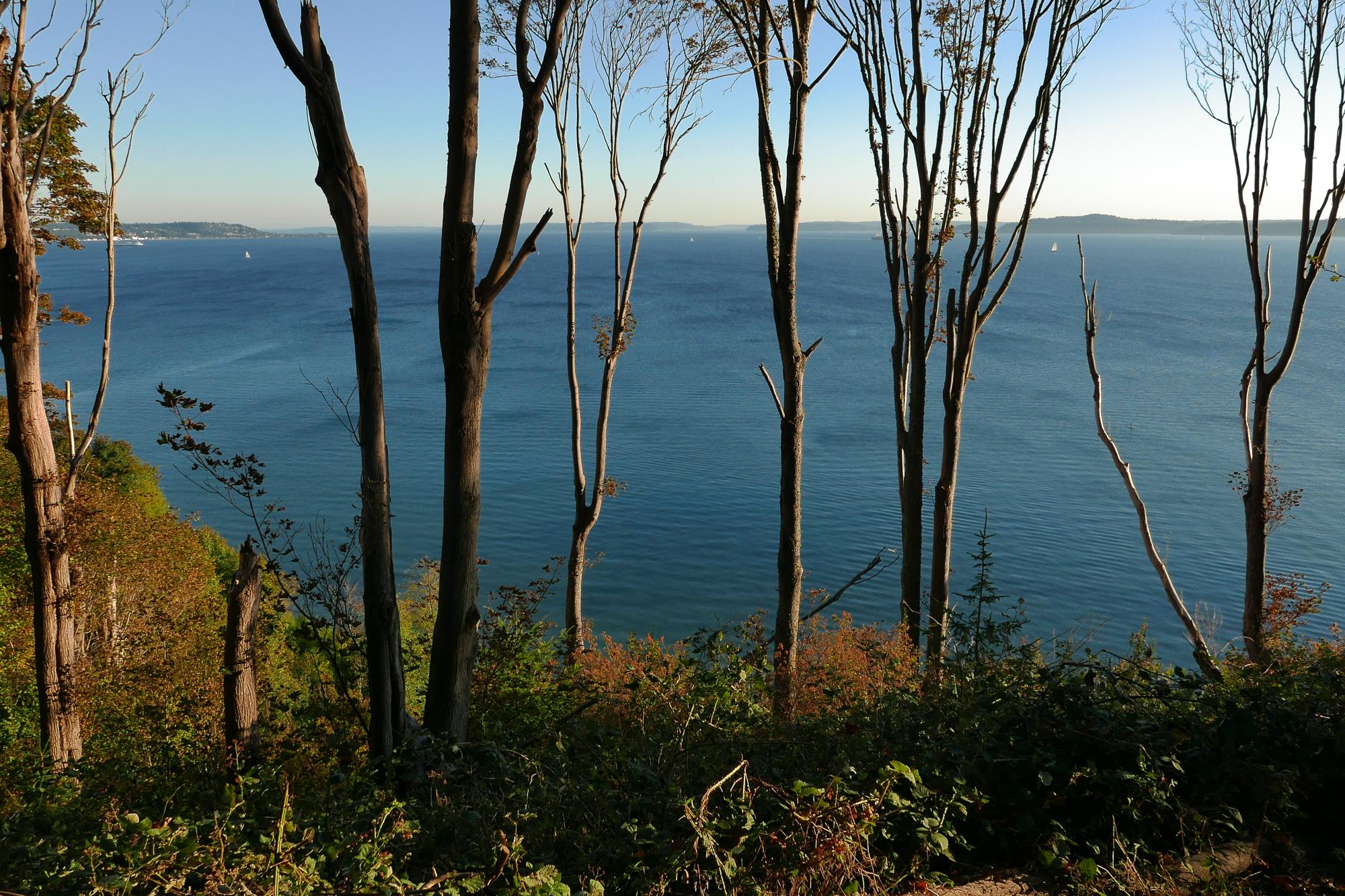 Puget Sound overlook