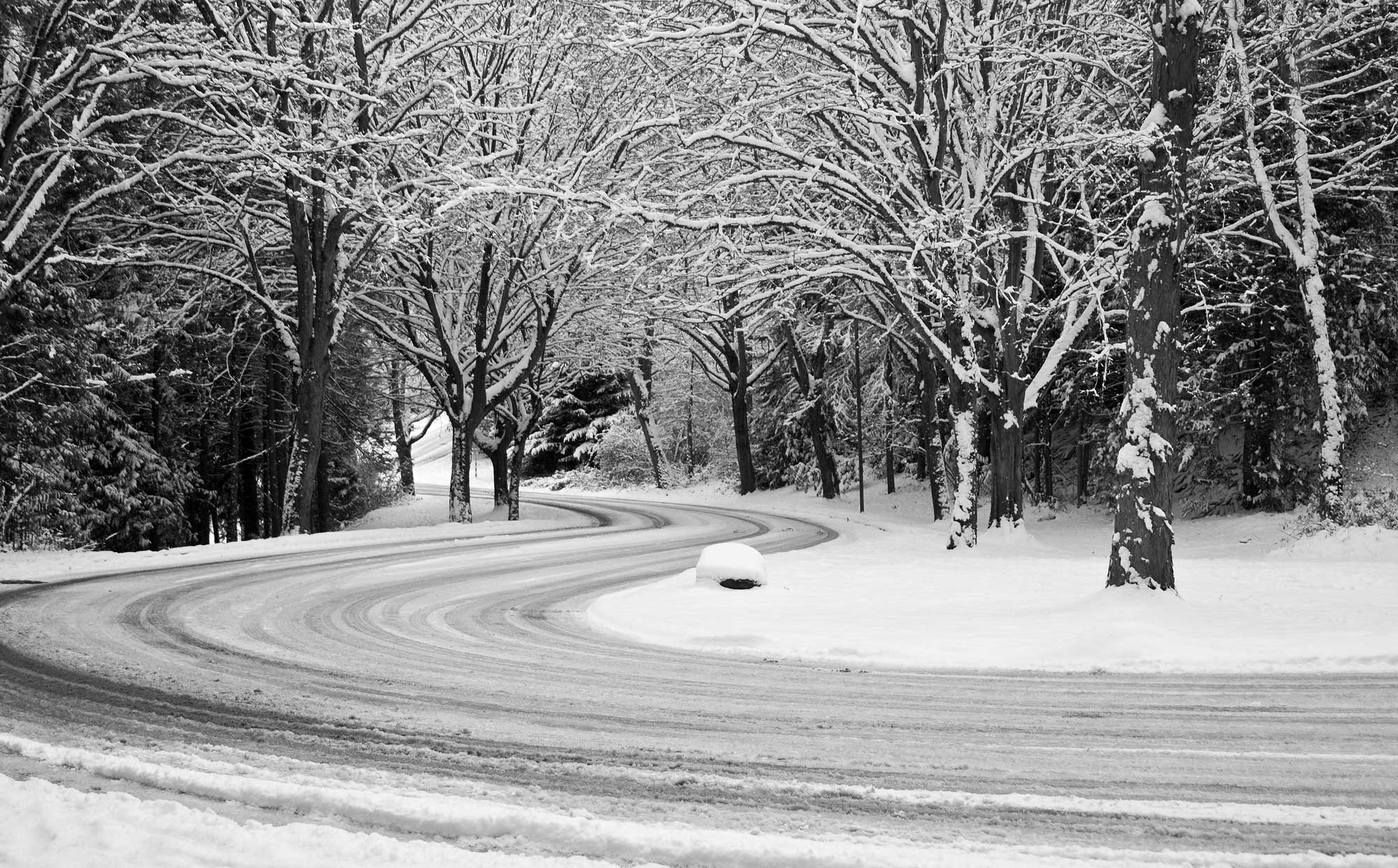 Lake Washington Boulevard