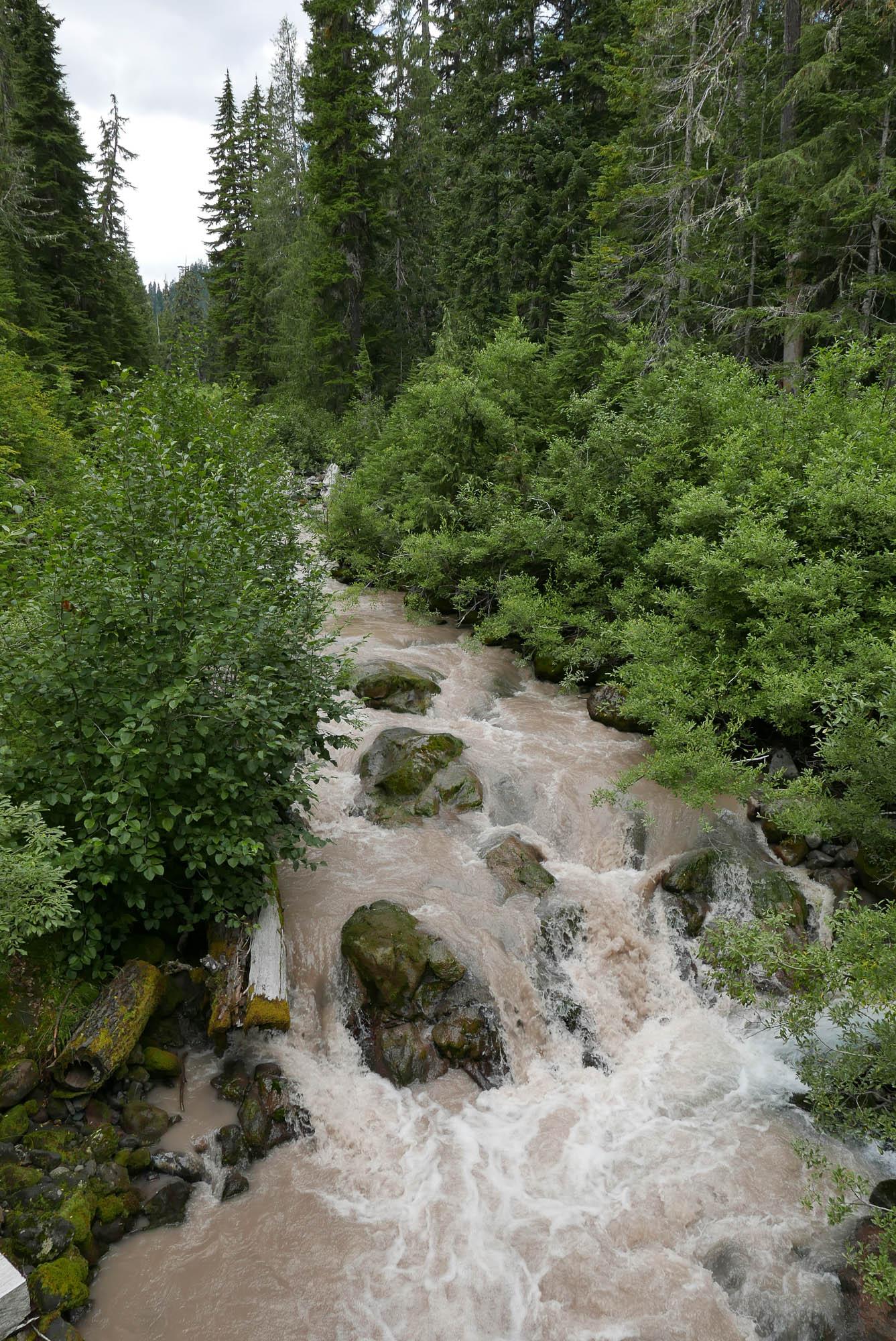 early summer creek