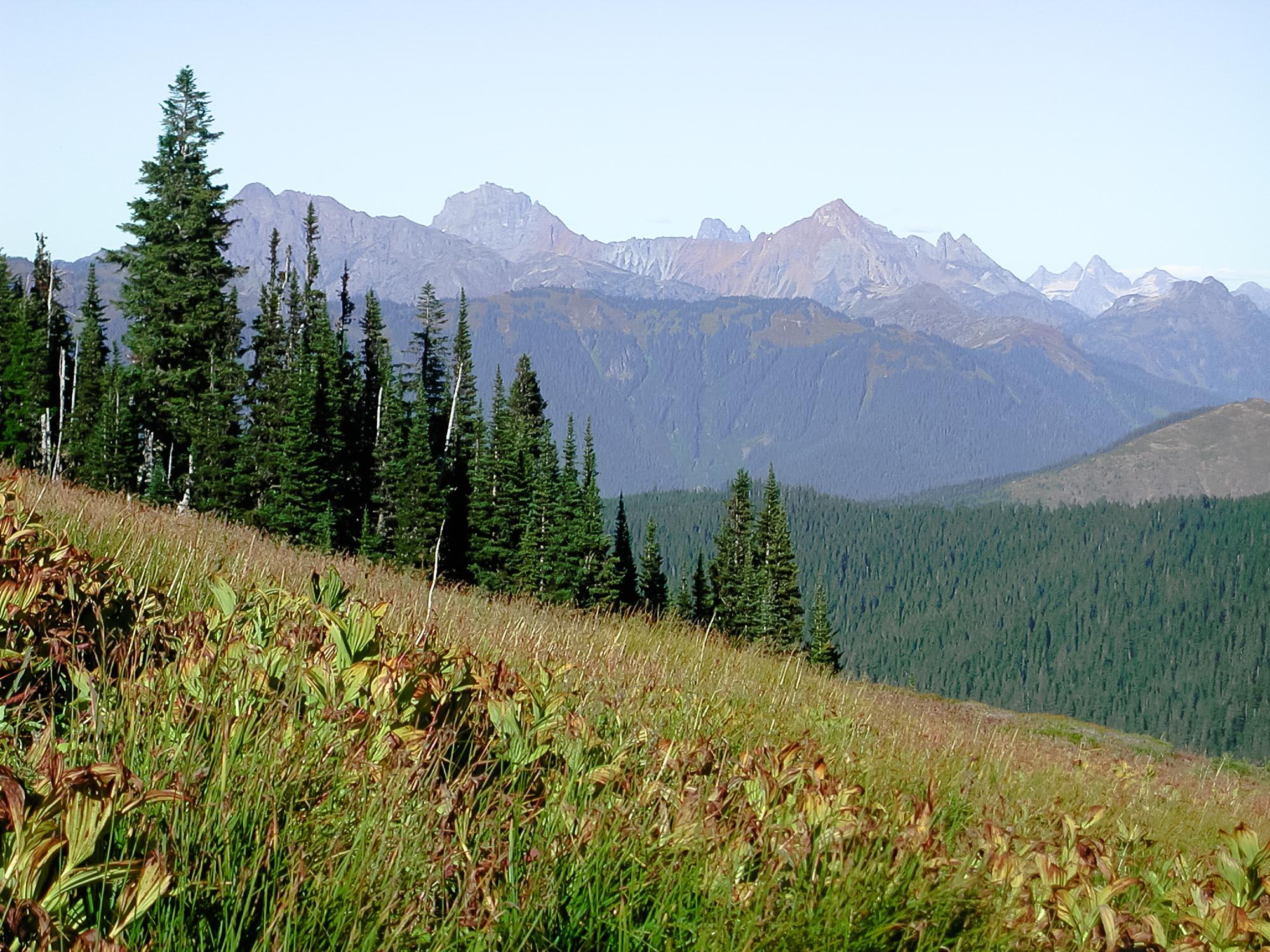 Border Peaks