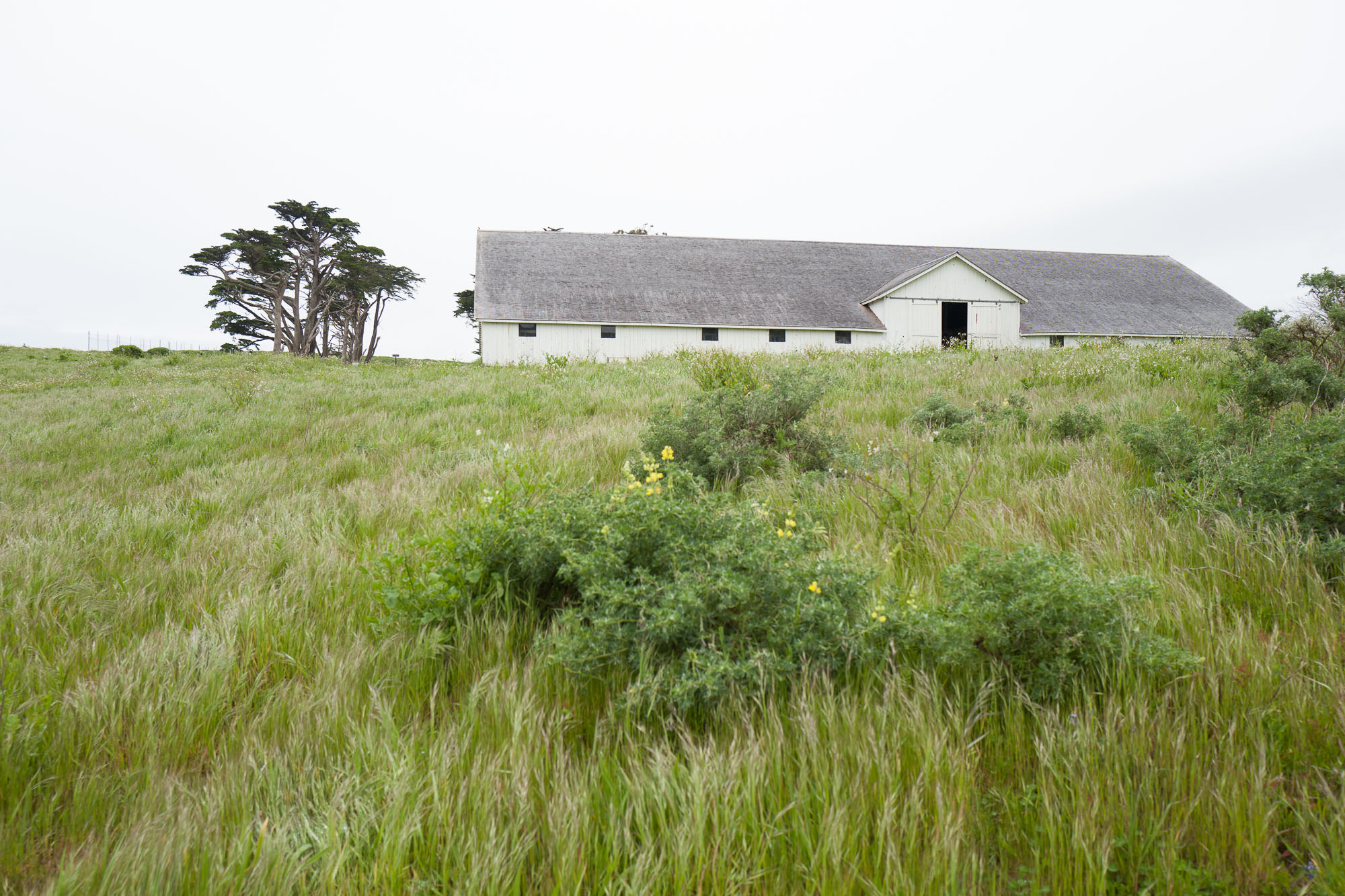 Pierce Point Ranch building